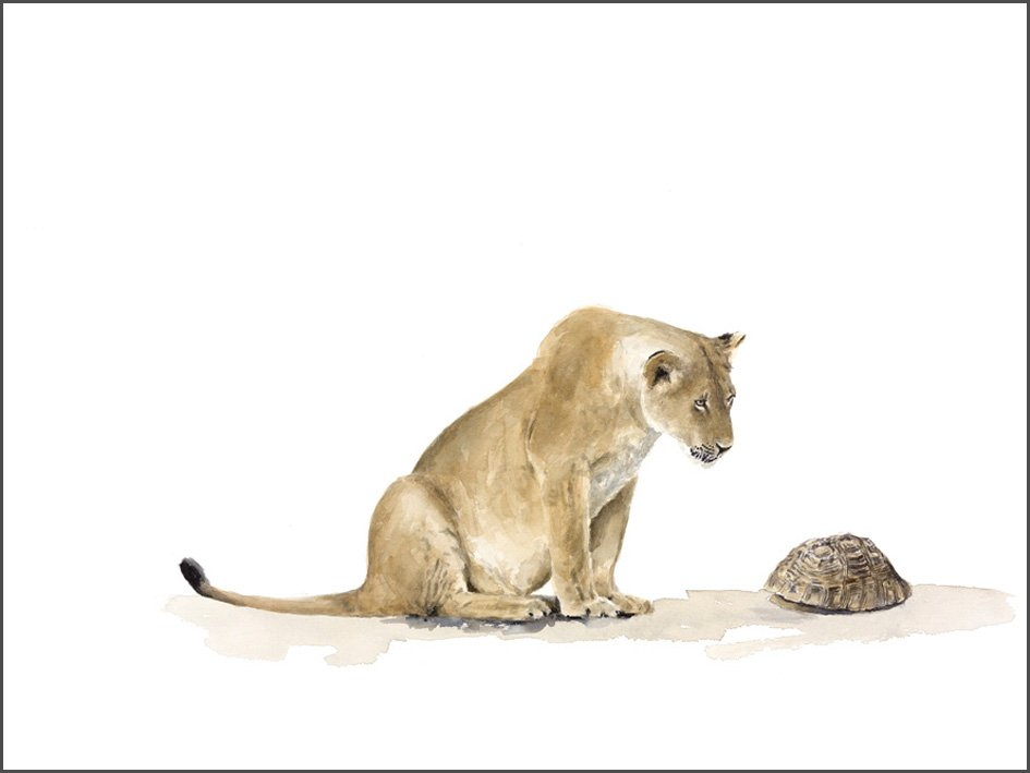Painting of a lion and tortoise.