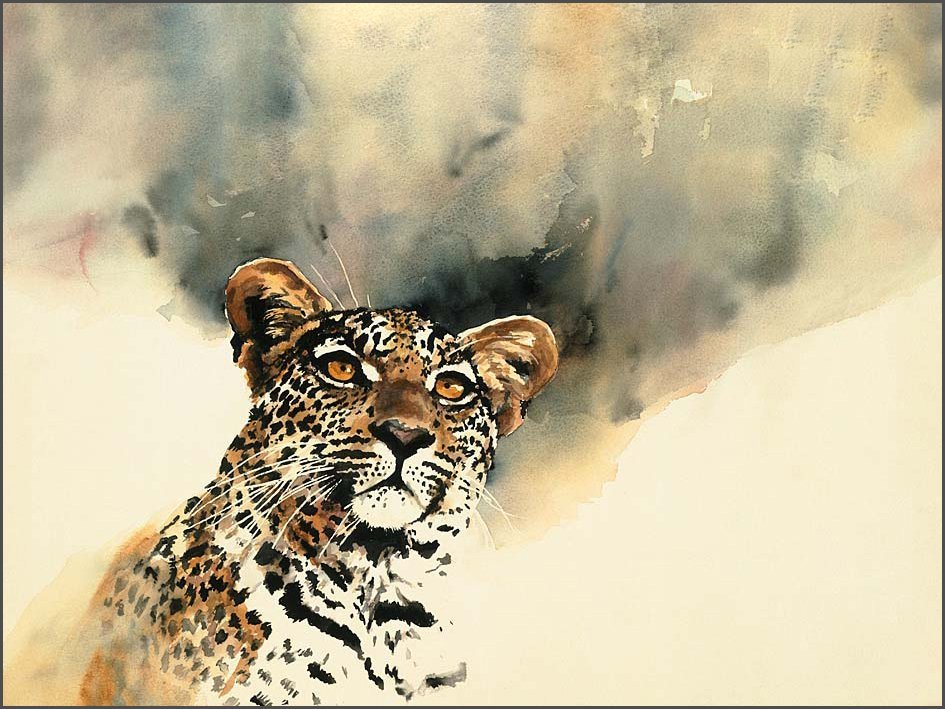 Biography South African artist Sue Dickinson