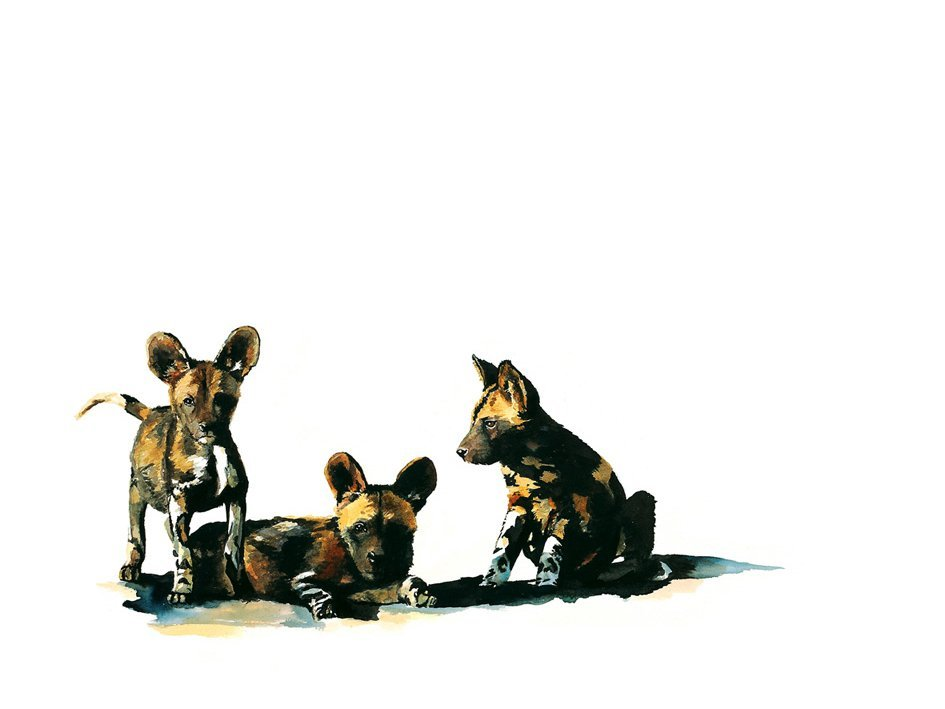 Art print of wild dog babies