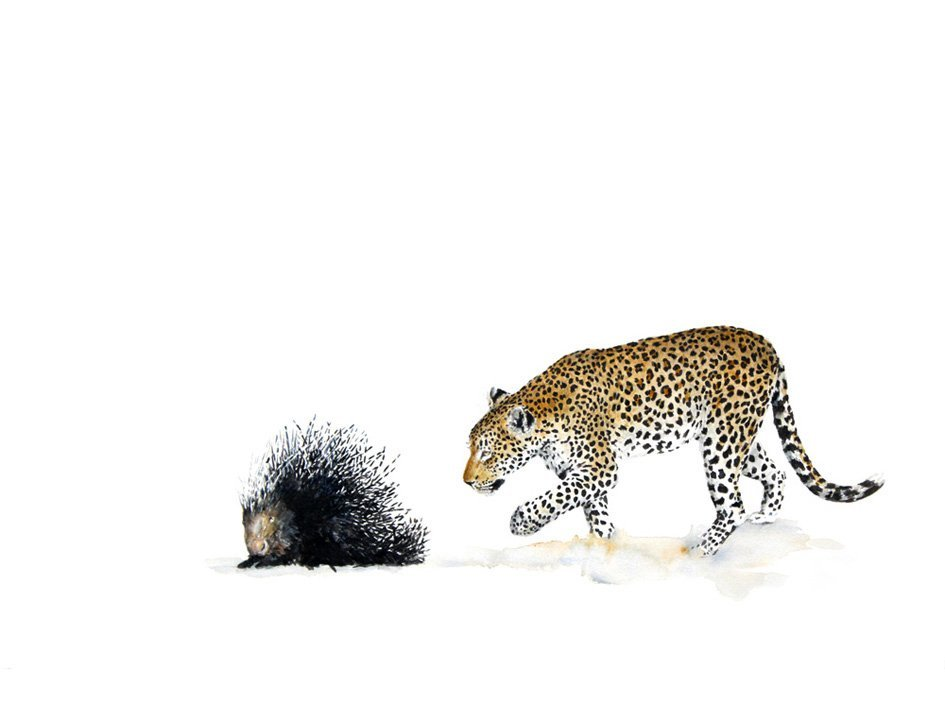 Print of a leopard and porcupine