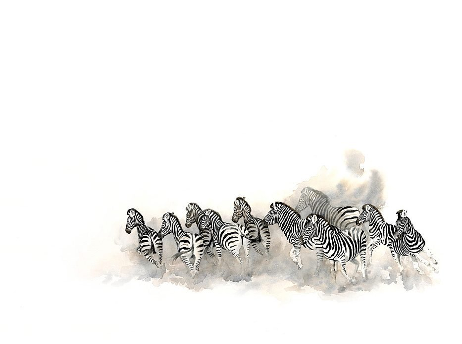 painting of zebra herd