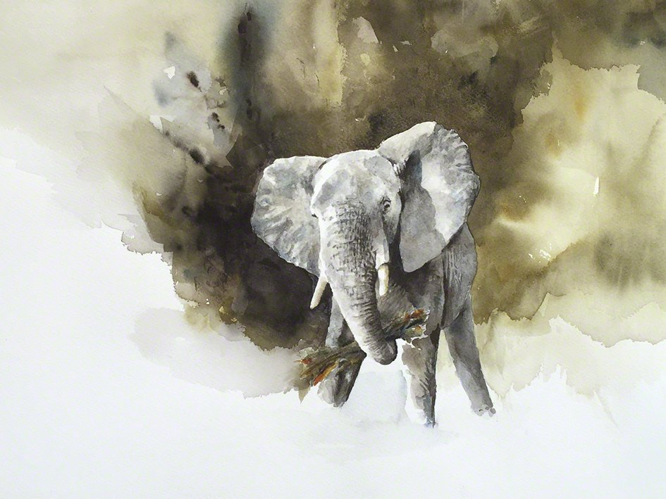 Art print of an elephant