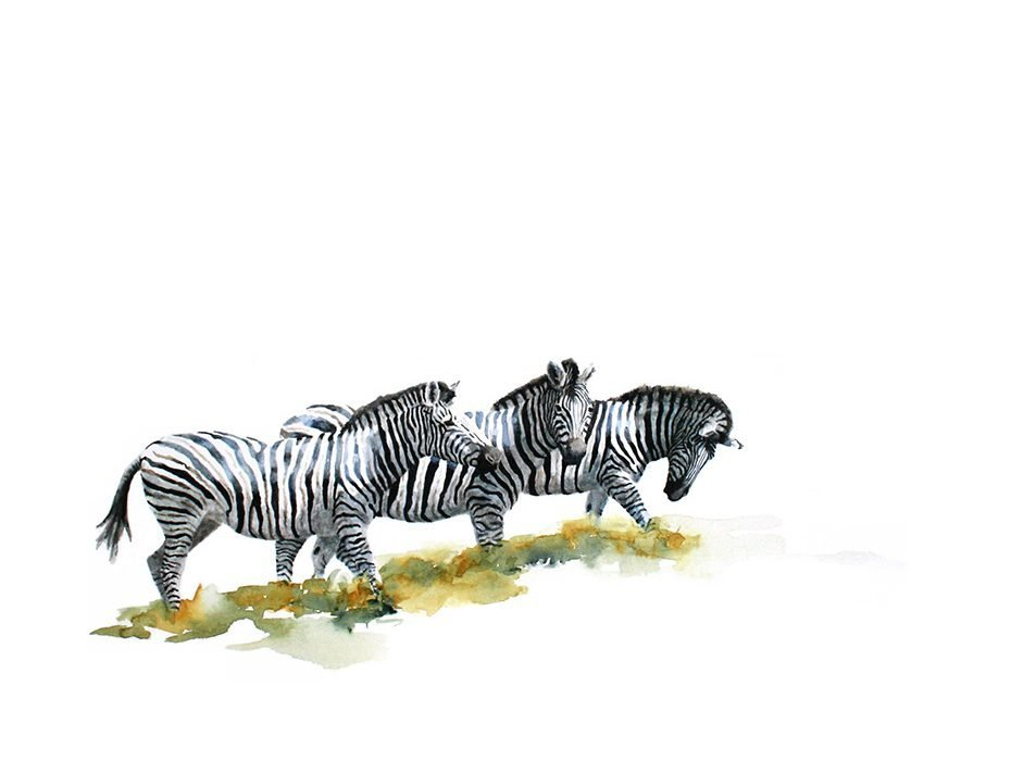 Original painting of zebras