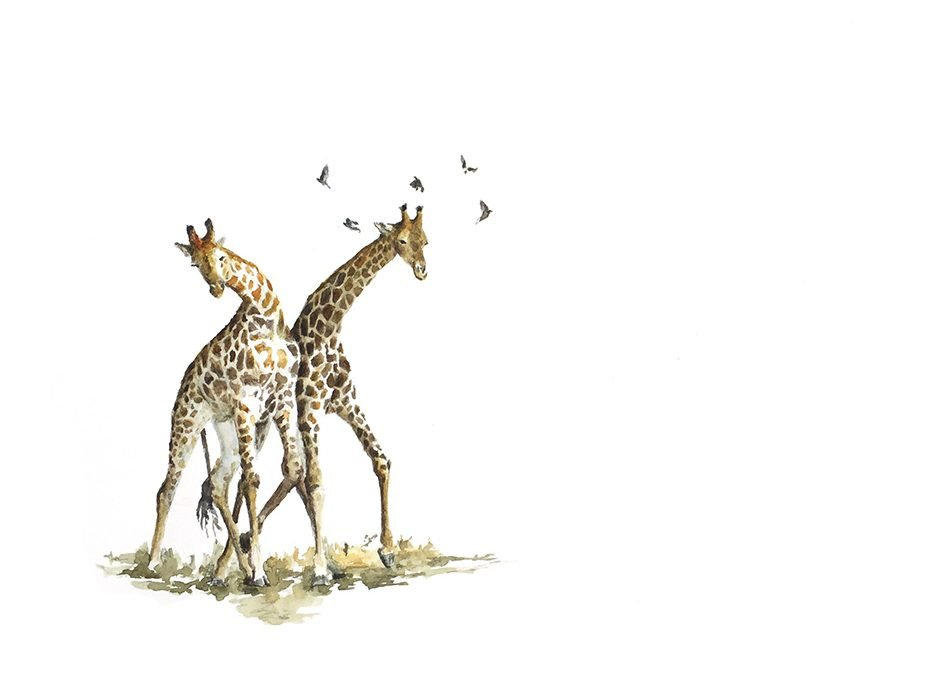 Original painting of giraffe fighting