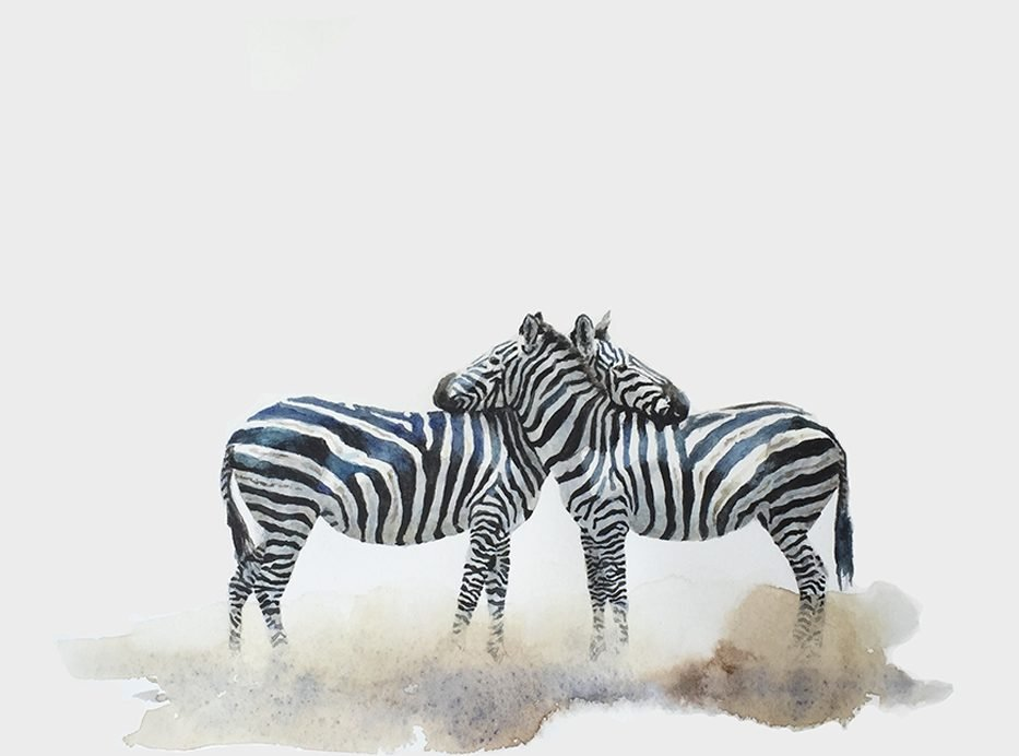 Original watercolour painting of zebras