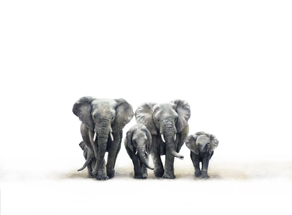 Art print of stampeding elephants