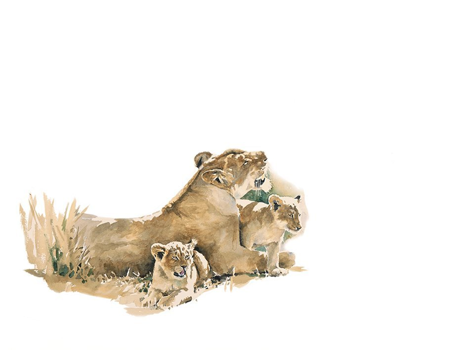 Art print of a lioness and cubs