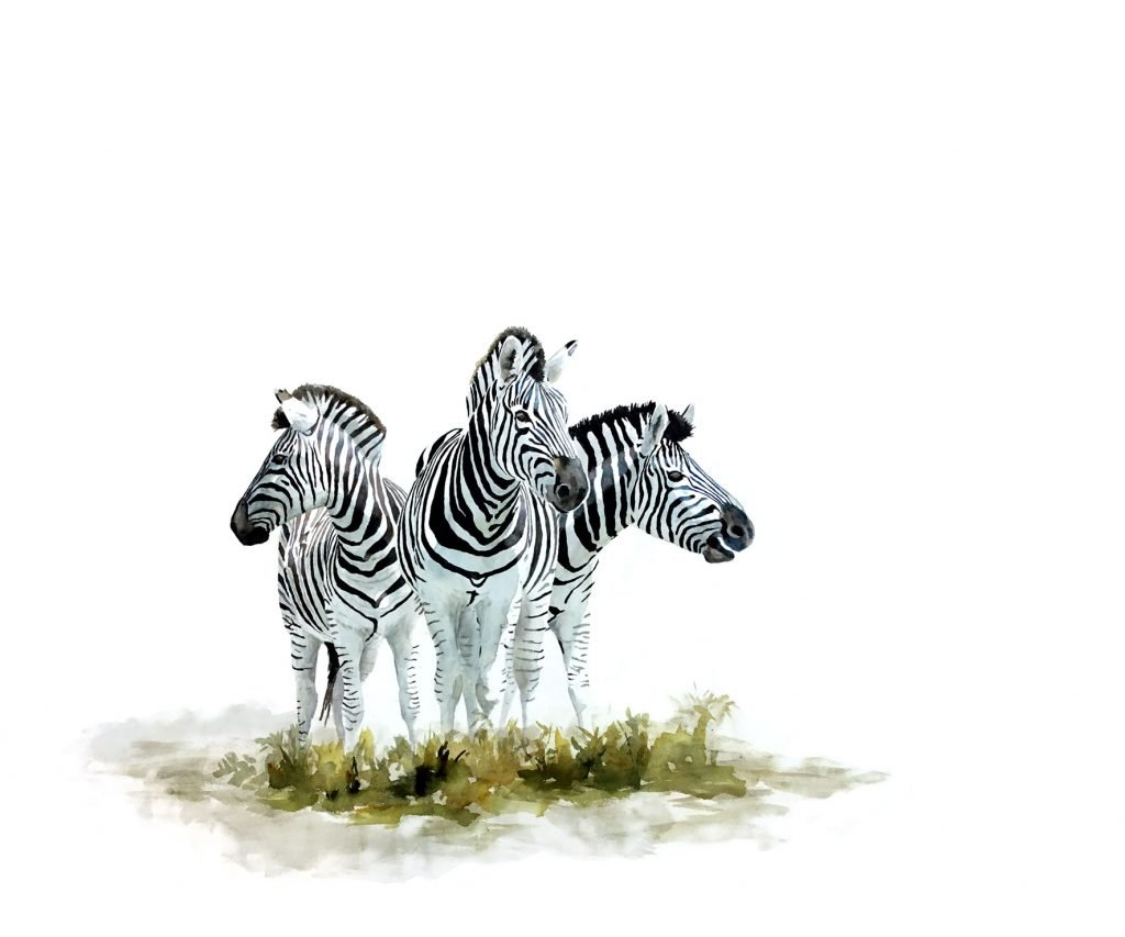 Painting of zebras original