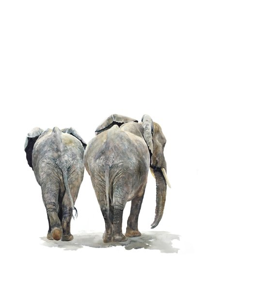 Painting of elephants from behind