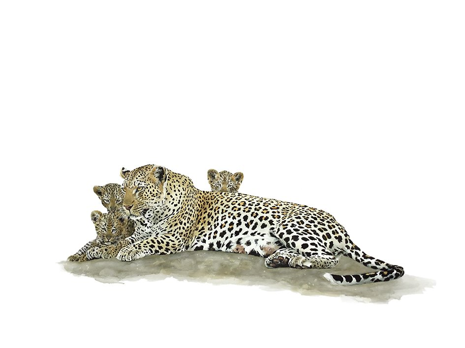 Art print of a leopard and cubs