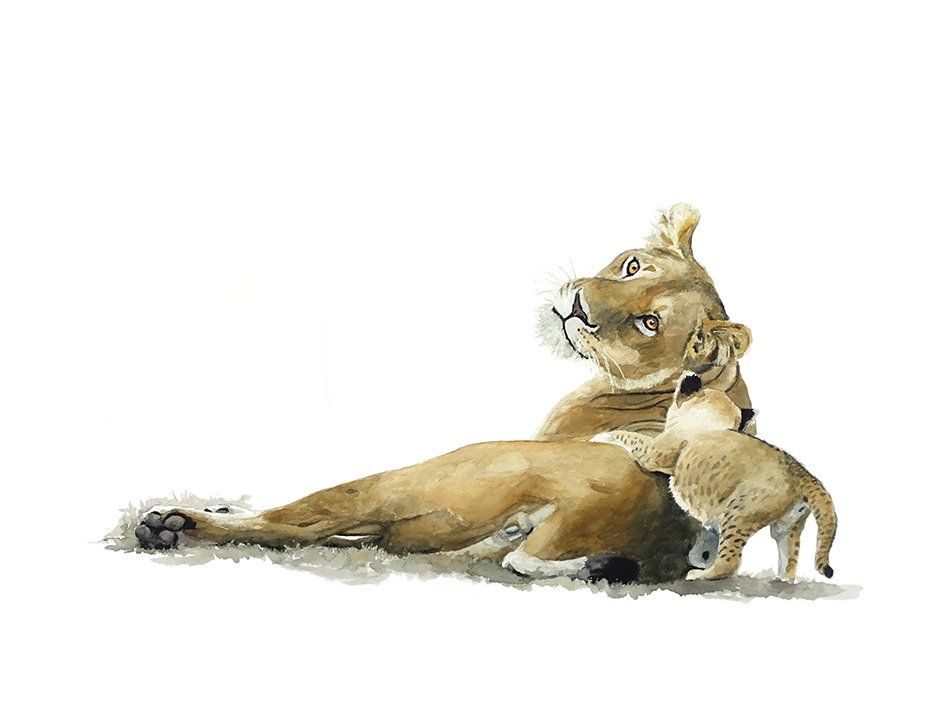 Art print of a lioness and cub