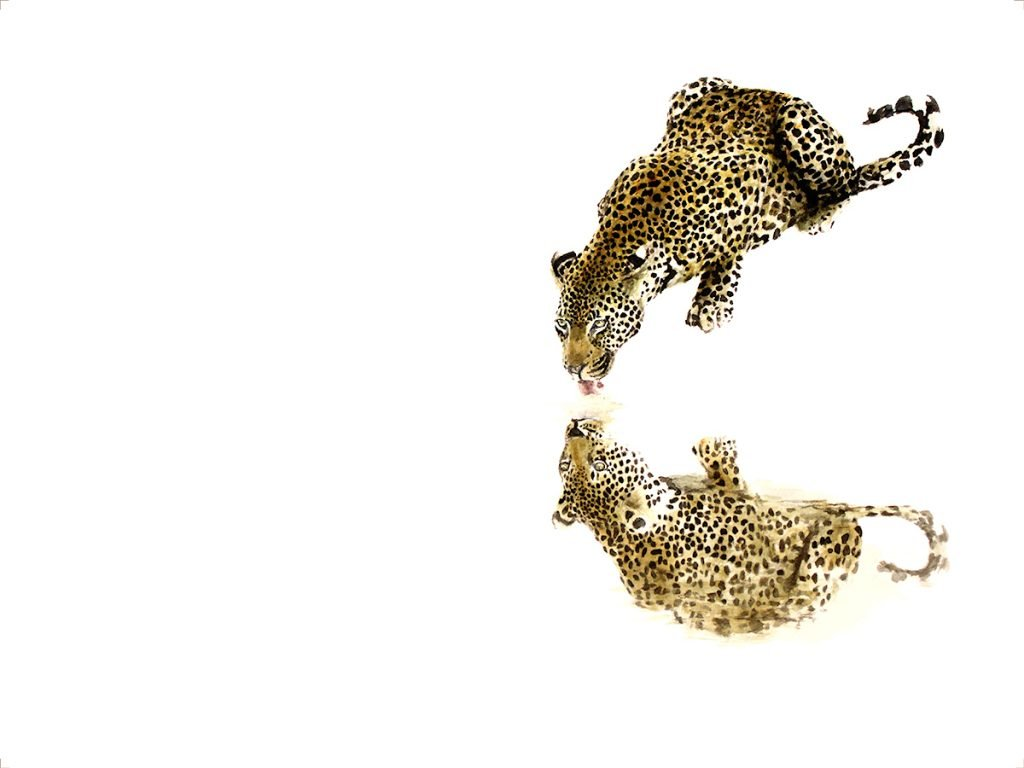 wildlife_art_print_leopard