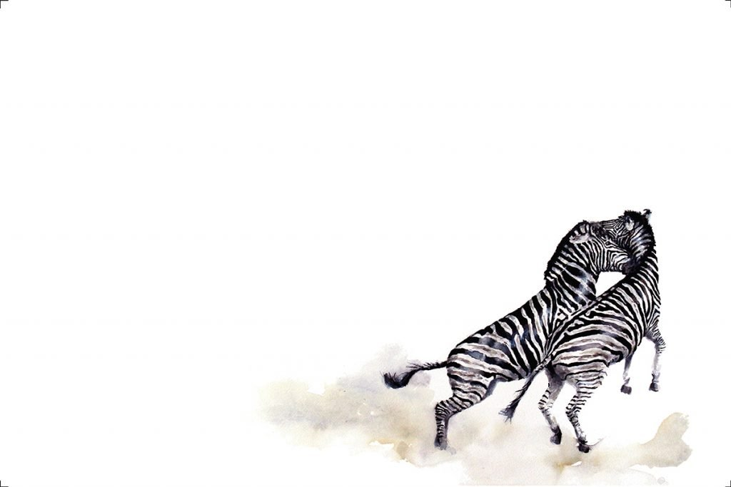 art-print-zebras-fighting