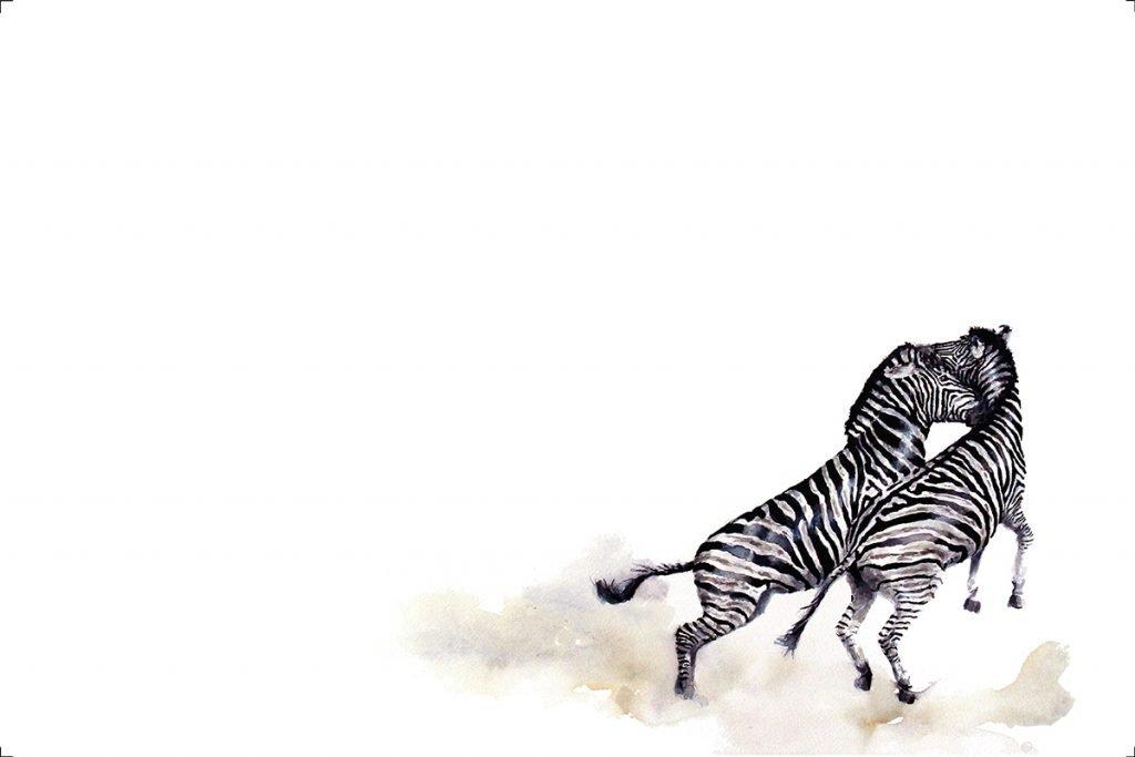 art-print-zebras-fighting