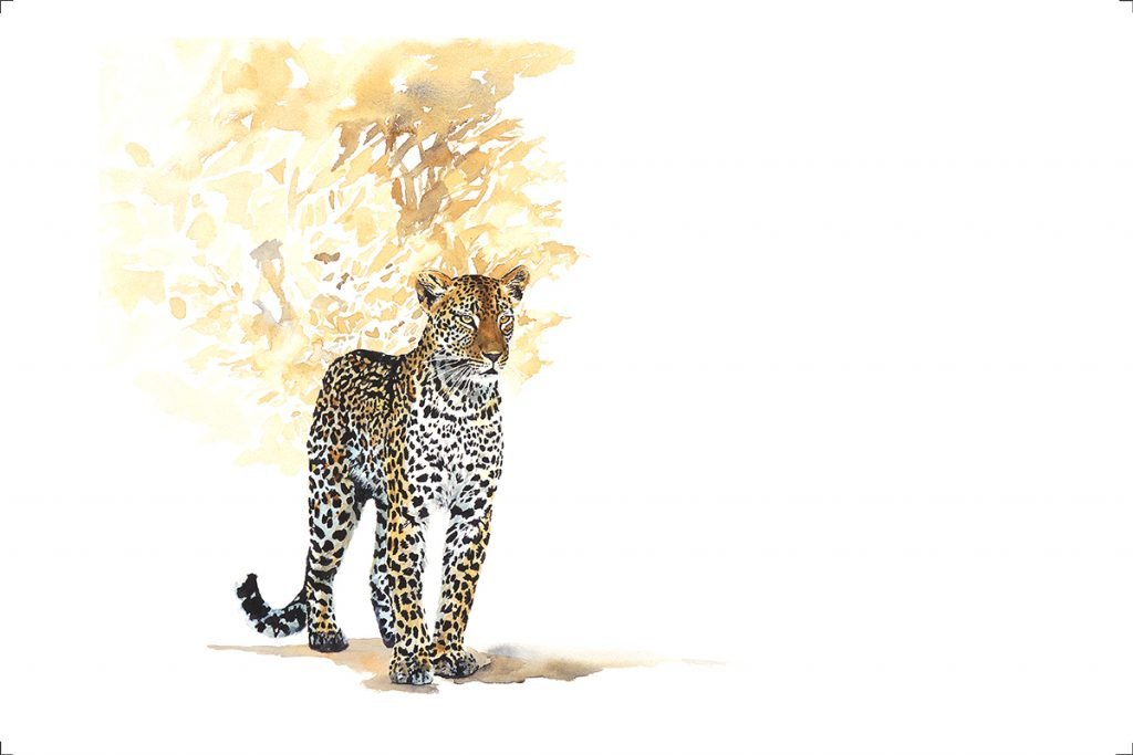 art print leopard