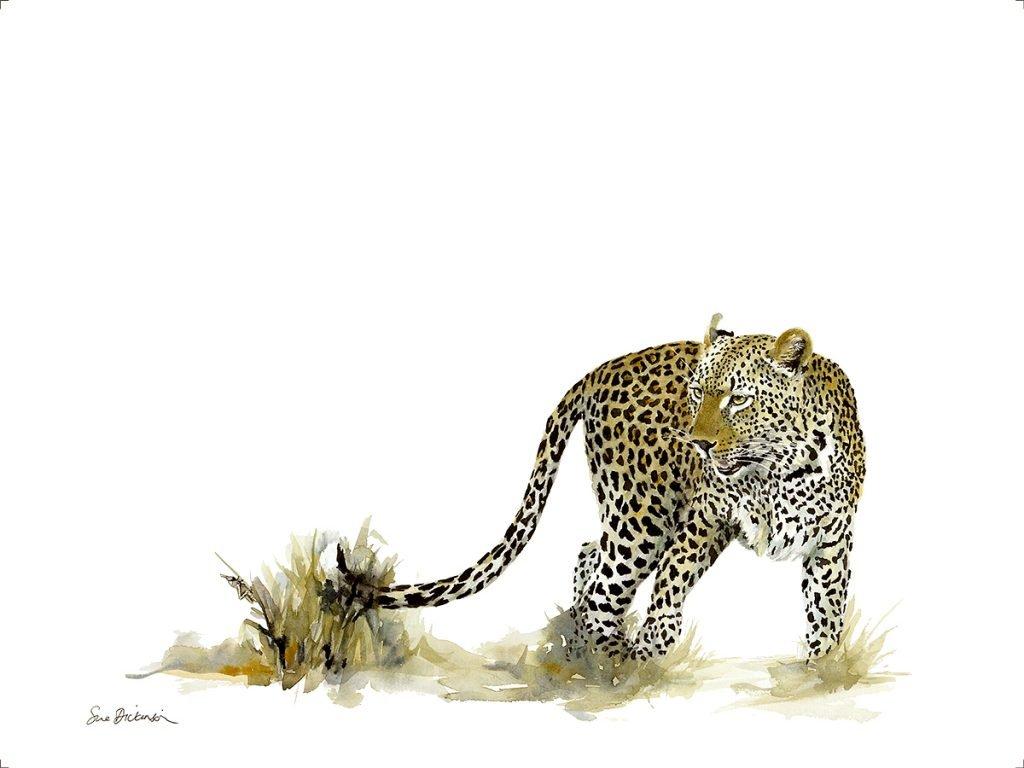 leopard-art-print