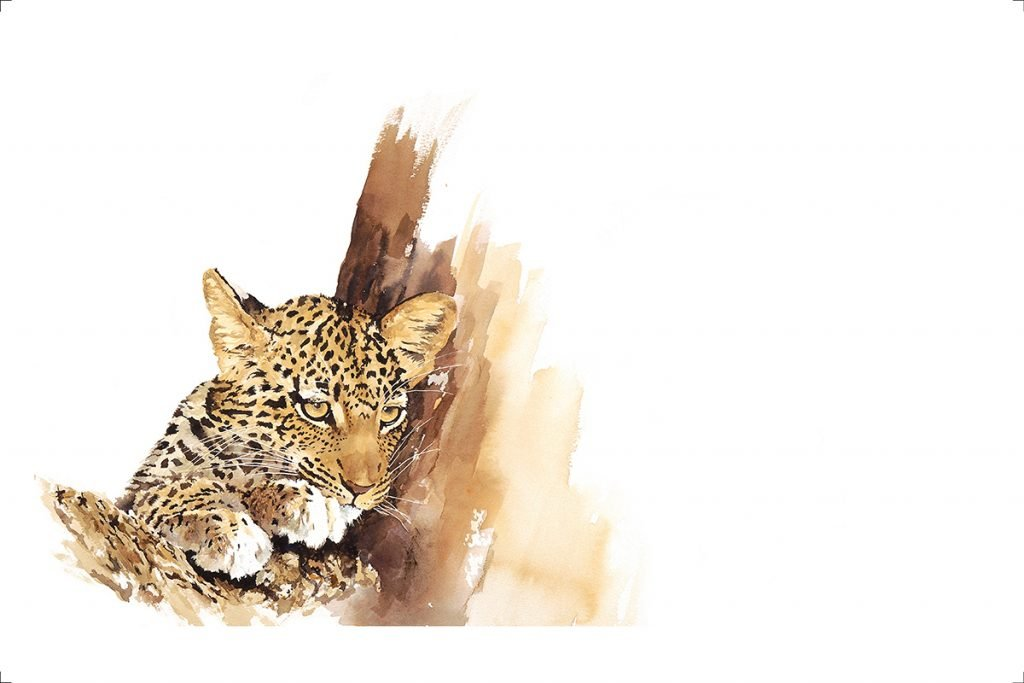 leopard-cub-wildlife-art-print