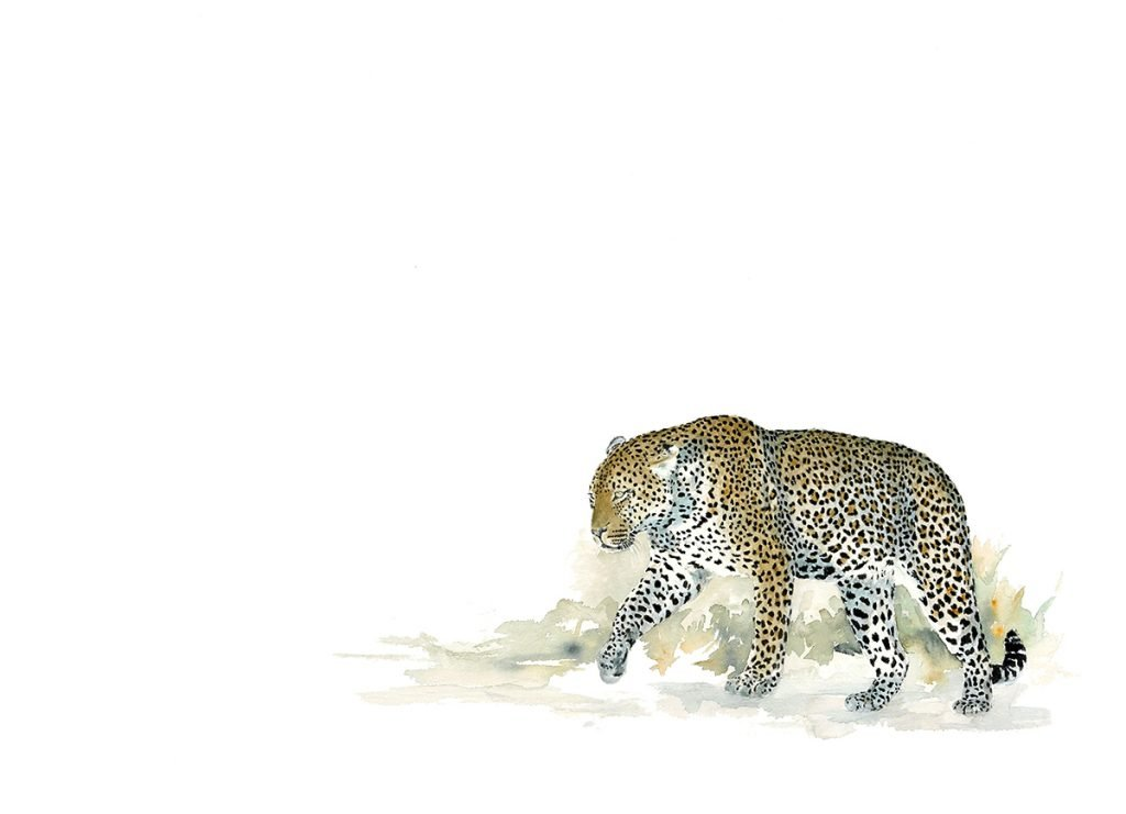 leopard_wildlife_art-print