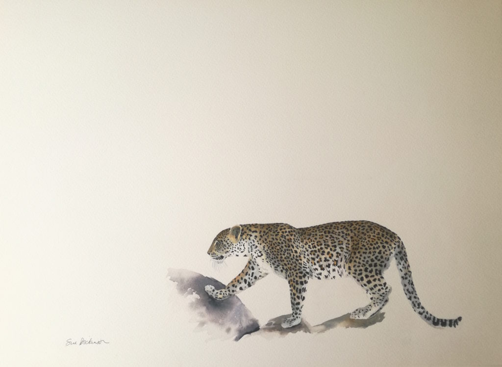 Watercolour painting of leopard